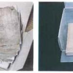 Restauración y conservación del fondo