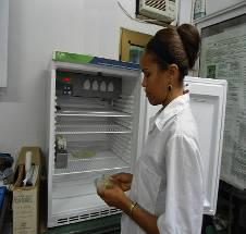 Ing. Oderlaise Valdés realizando observaciones del crecimiento fúngico después del proceso de incubación a 30ºC