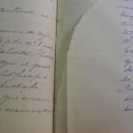 Libro de Actas 1875-1883 con rasgados.