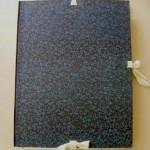 Organización final: una carpeta de conservación y cuatro archivadores.