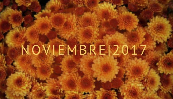 Nov-Bol-Flores