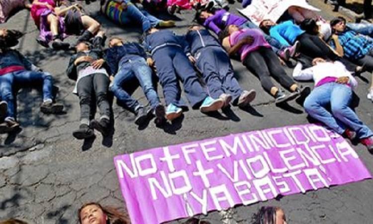 Archivo de la Violencia Feminicida: por los derechos humanos de las niñas y las mujeres en México (1ª fase)
